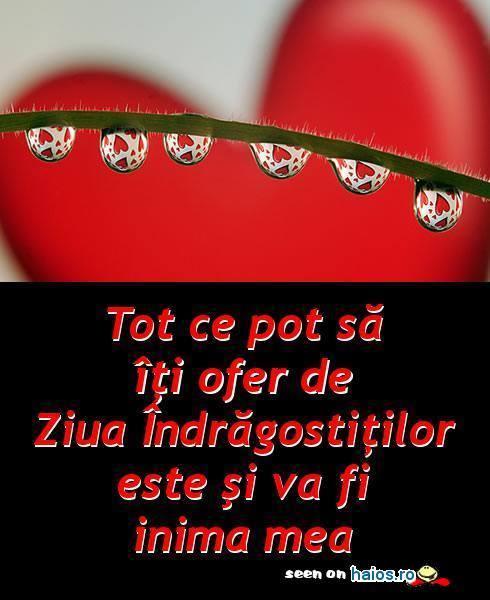tot_ce_pot_sa_iti_ofer_de_ziua_indragostitilor_este_si_va_fi_inima_mea.jpg